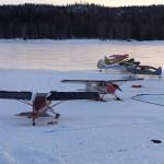 PA22/20s on skis on ice